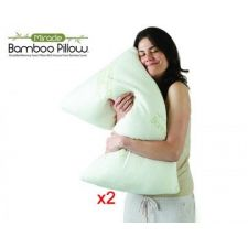 BAMBOO PILLOW LOT DE 2